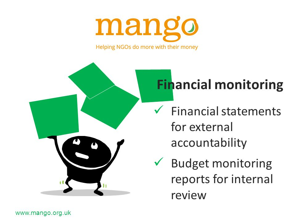 Financial monitoring Financial statements for external accountability Budget monitoring reports for internal review