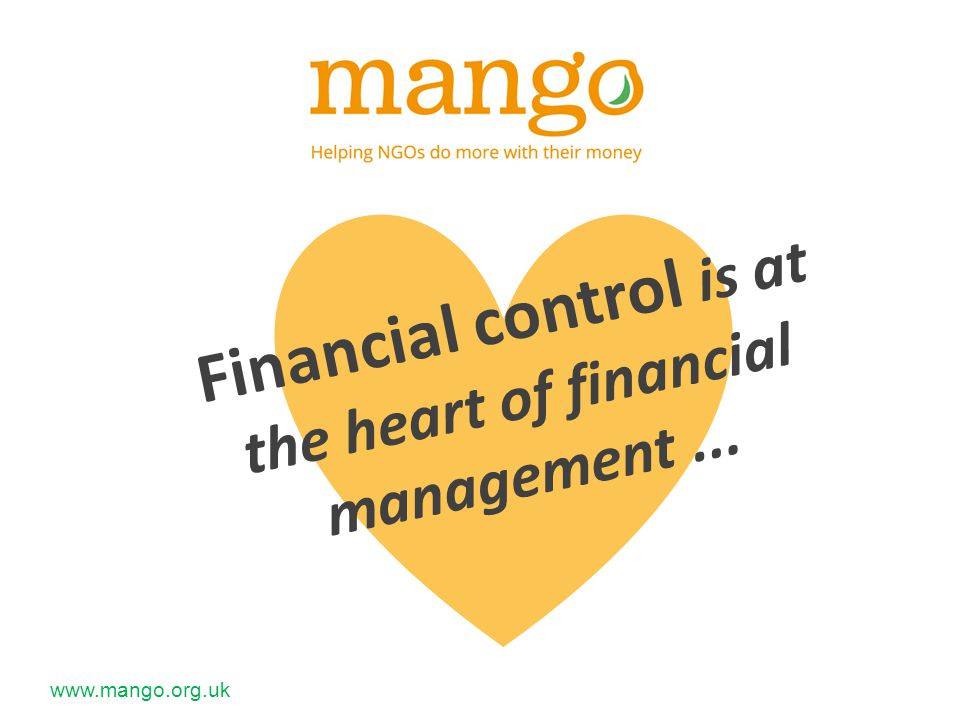 Financial control is at the heart of financial management...