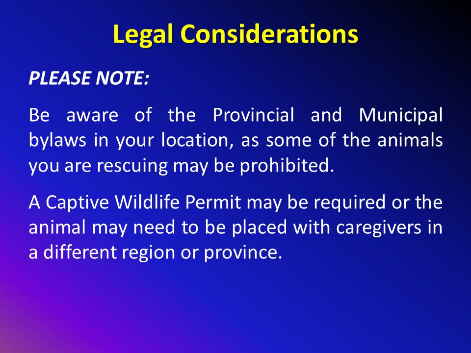 Legal Considerations PLEASE NOTE: Be aware of the Provincial and Municipal bylaws in your location, as some of the animals you are rescuing may be prohibited.
