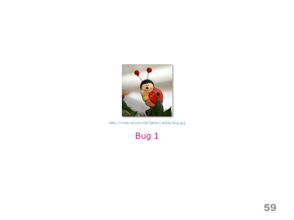 59 Bug 1 http://rinat.relcom.net/Gallery/slides/bug.jpg