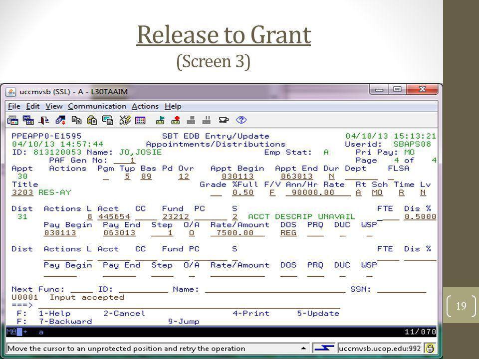Release to Grant (Screen 3) 19
