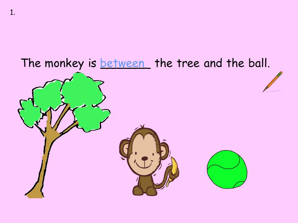 between up down first last The monkey is _______ the tree and the ball.between 1.