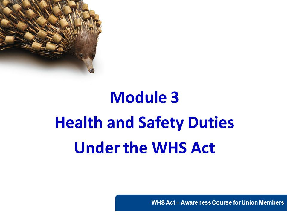 www.nsca.org.au2 Health and Safety Duties This module covers health and safety duties under the WHS Act including:  Key concepts of health and safety duties  The meaning of 'reasonably practicable'  Primary duty of care  Further duties of PCBUs including those who:  manage /control workplaces and/or fixtures, fittings or plant  design, manufacture, import, supply, install, commission or construct plant, substances and structures  Duties of officers, workers and other persons in the workplace  Failure to comply – Category 1, 2 and 3 offences WHS Act s13-24