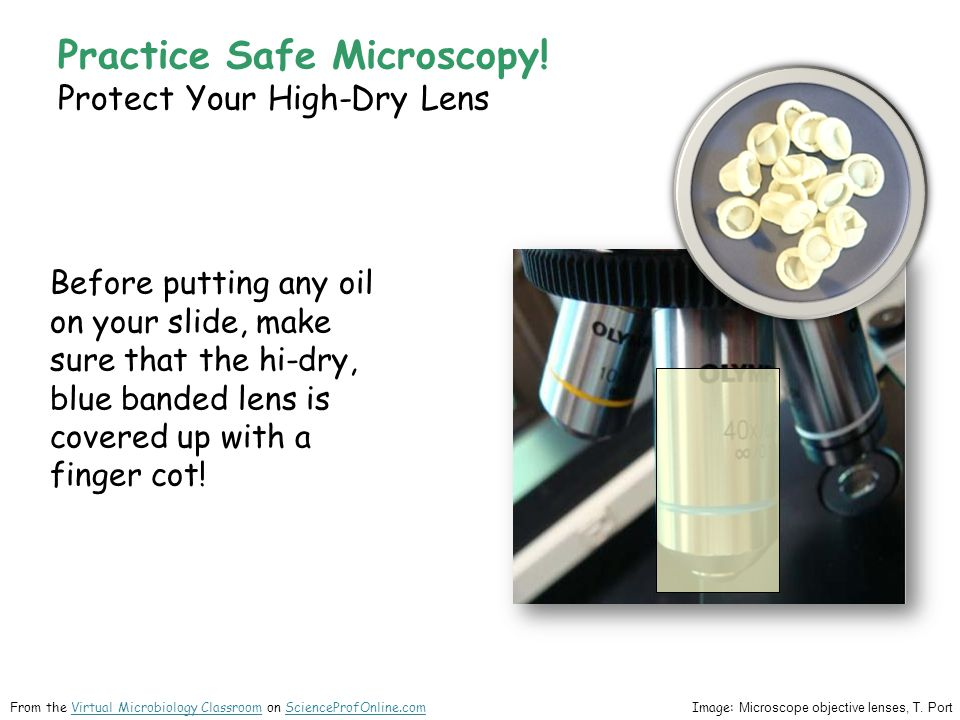 Practice Safe Microscopy! Protect Your High-Dry Lens Before putting any oil on your slide, make sure that the hi-dry, blue banded lens is covered up w