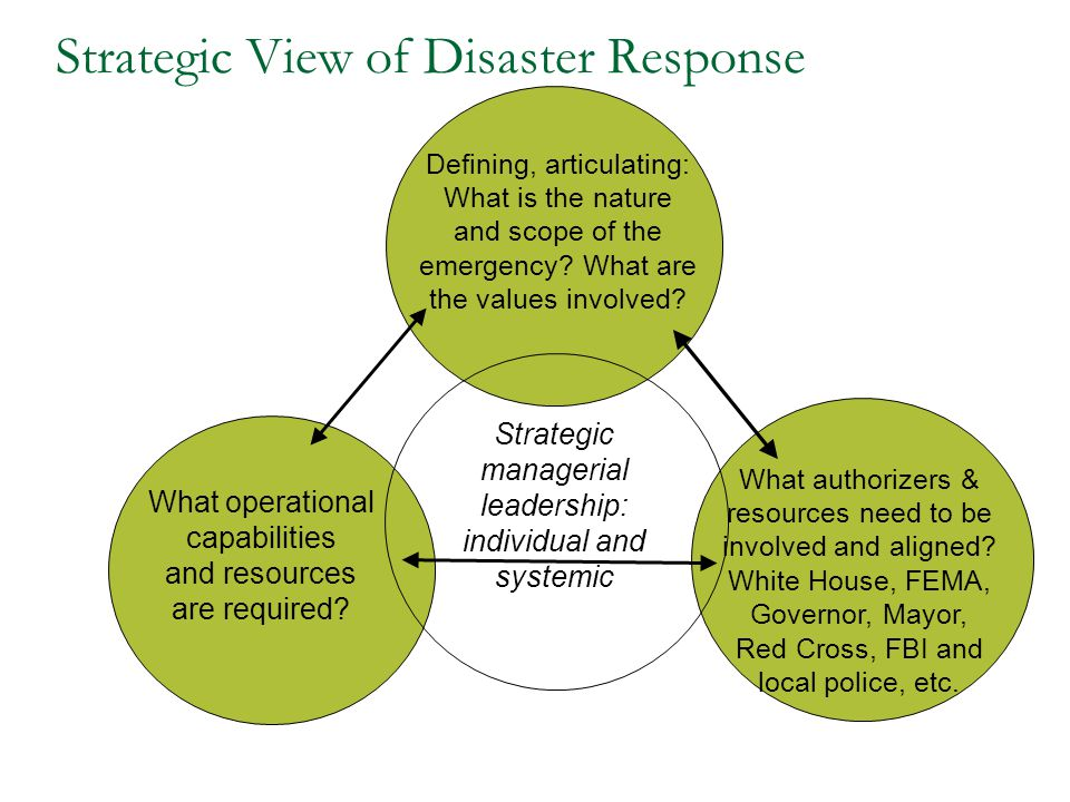 Strategic View of Disaster Response Defining, articulating: What is the nature and scope of the emergency? What are the values involved? What operatio