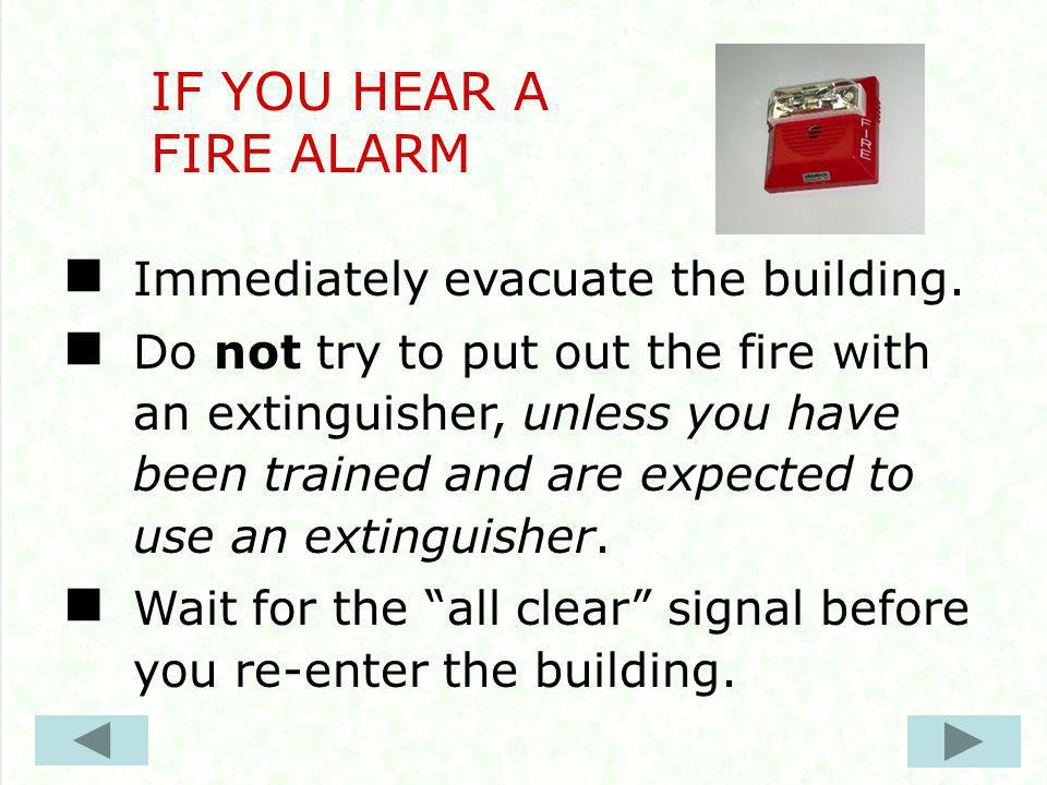 Immediately evacuate the building.