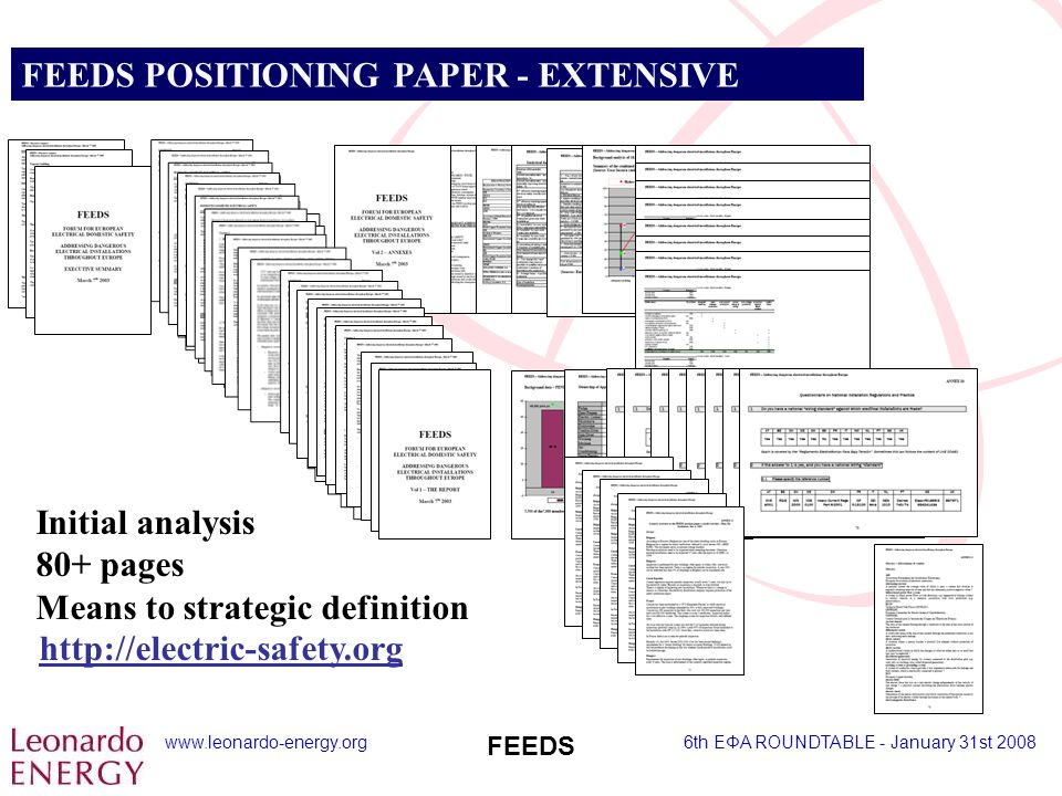 www.leonardo-energy.org6th EΦA ROUNDTABLE - January 31st 2008 FEEDS FEEDS POSITIONING PAPER - EXTENSIVE Initial analysis 80+ pages Means to strategic