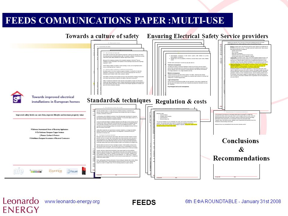 www.leonardo-energy.org6th EΦA ROUNDTABLE - January 31st 2008 FEEDS FEEDS COMMUNICATIONS PAPER :MULTI-USE Service providersTowards a culture of safety