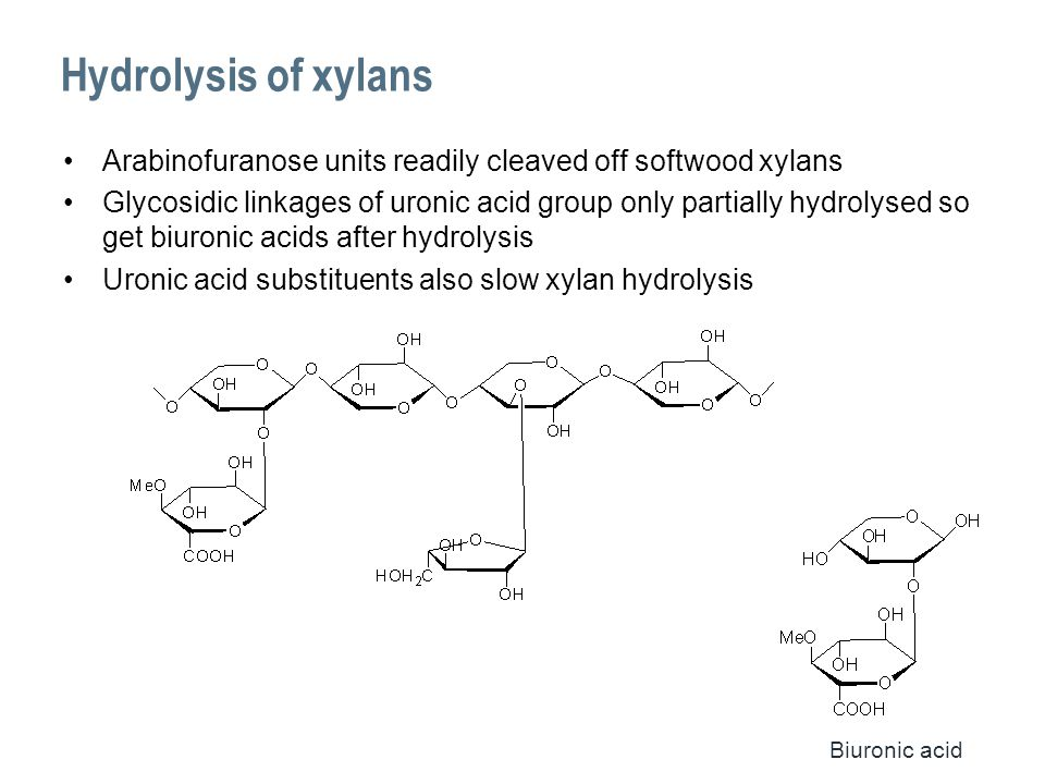 Hydrolysis of xylans Arabinofuranose units readily cleaved off softwood xylans Glycosidic linkages of uronic acid group only partially hydrolysed so get biuronic acids after hydrolysis Uronic acid substituents also slow xylan hydrolysis Biuronic acid