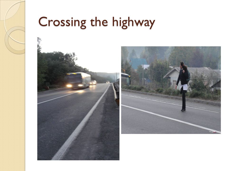 Crossing the highway