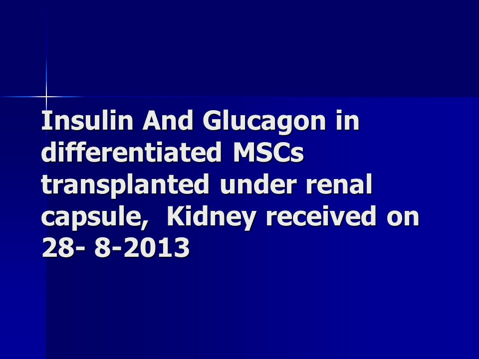 Insulin And Glucagon in differentiated MSCs transplanted under renal capsule, Kidney received on