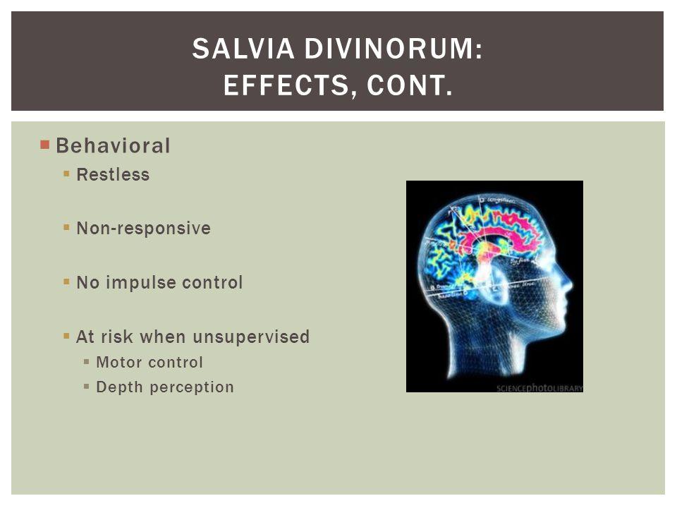  Behavioral  Restless  Non-responsive  No impulse control  At risk when unsupervised  Motor control  Depth perception SALVIA DIVINORUM: EFFECTS