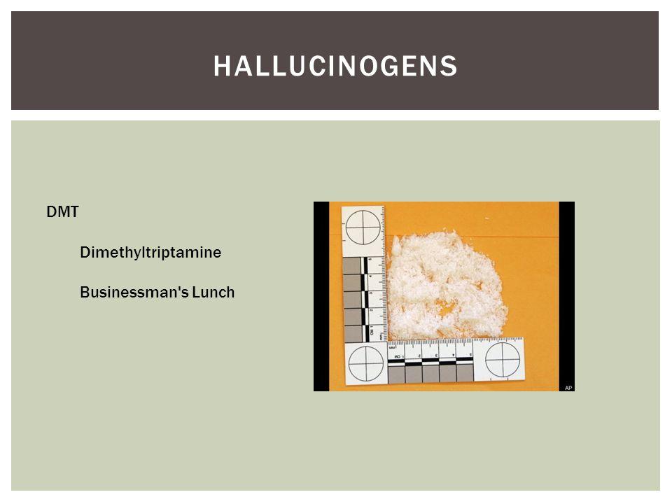 HALLUCINOGENS DMT Dimethyltriptamine Businessman's Lunch