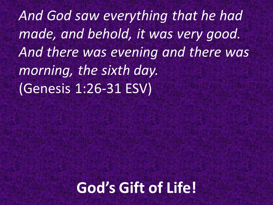 God's Gift of Life.And God saw everything that he had made, and behold, it was very good.