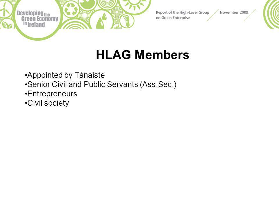 HLAG Members Appointed by Tánaiste Senior Civil and Public Servants (Ass.Sec.) Entrepreneurs Civil society