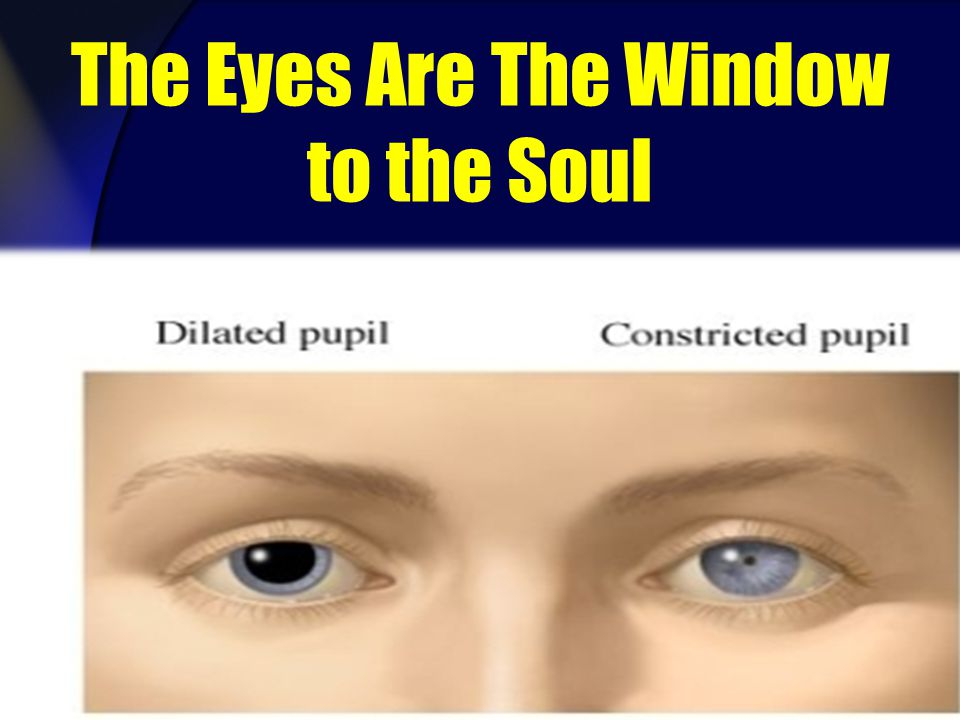 The Eyes Are The Window to the Soul
