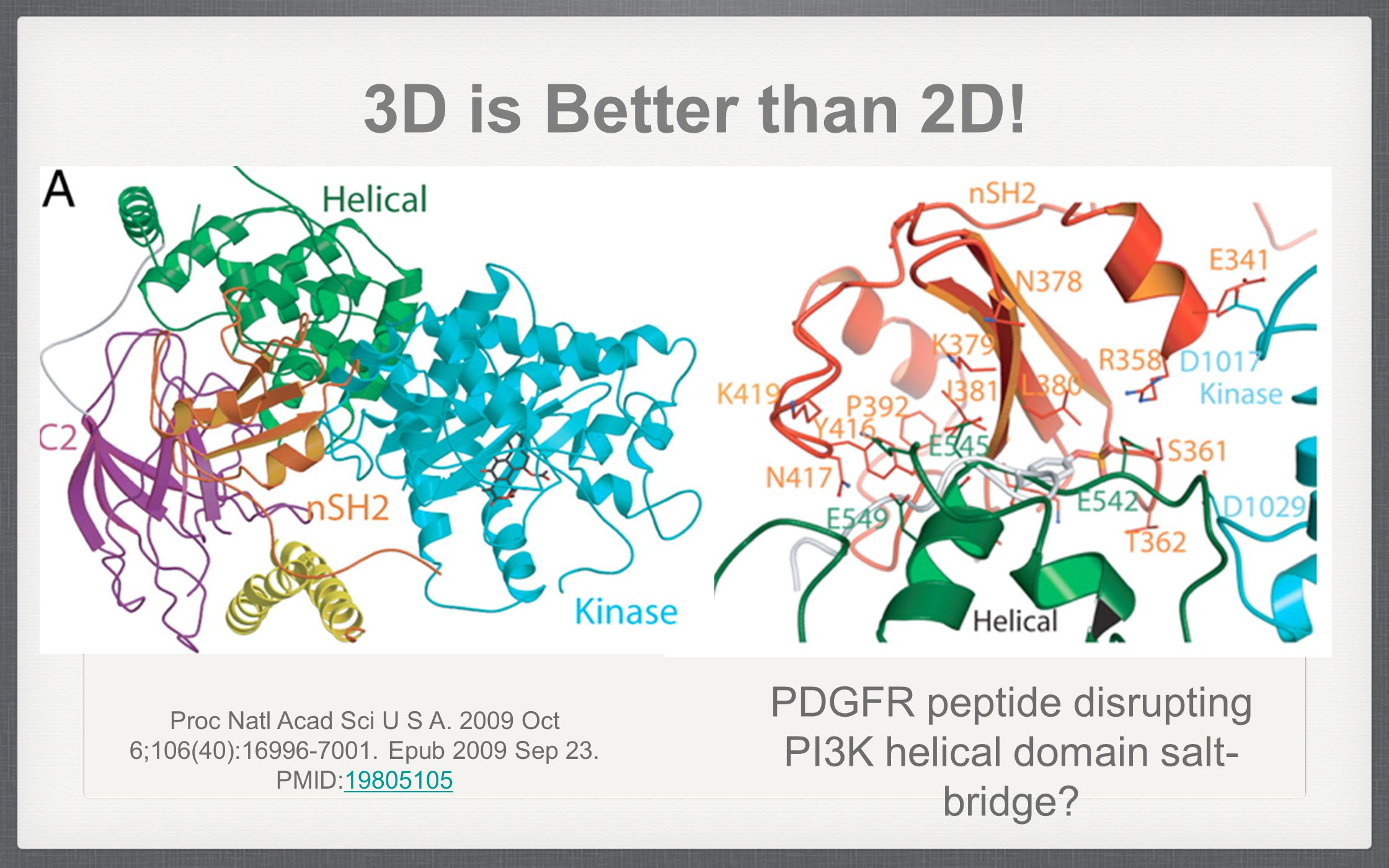 3D is Better than 2D! Proc Natl Acad Sci U S A. 2009 Oct 6;106(40):16996-7001. Epub 2009 Sep 23. PMID:1980510519805105 PDGFR peptide disrupting PI3K h