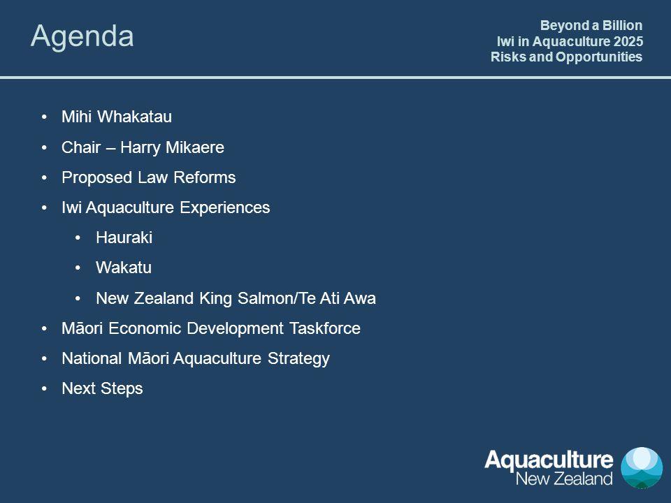 Mihi Whakatau Chair – Harry Mikaere Proposed Law Reforms Iwi Aquaculture Experiences Hauraki Wakatu New Zealand King Salmon/Te Ati Awa Māori Economic