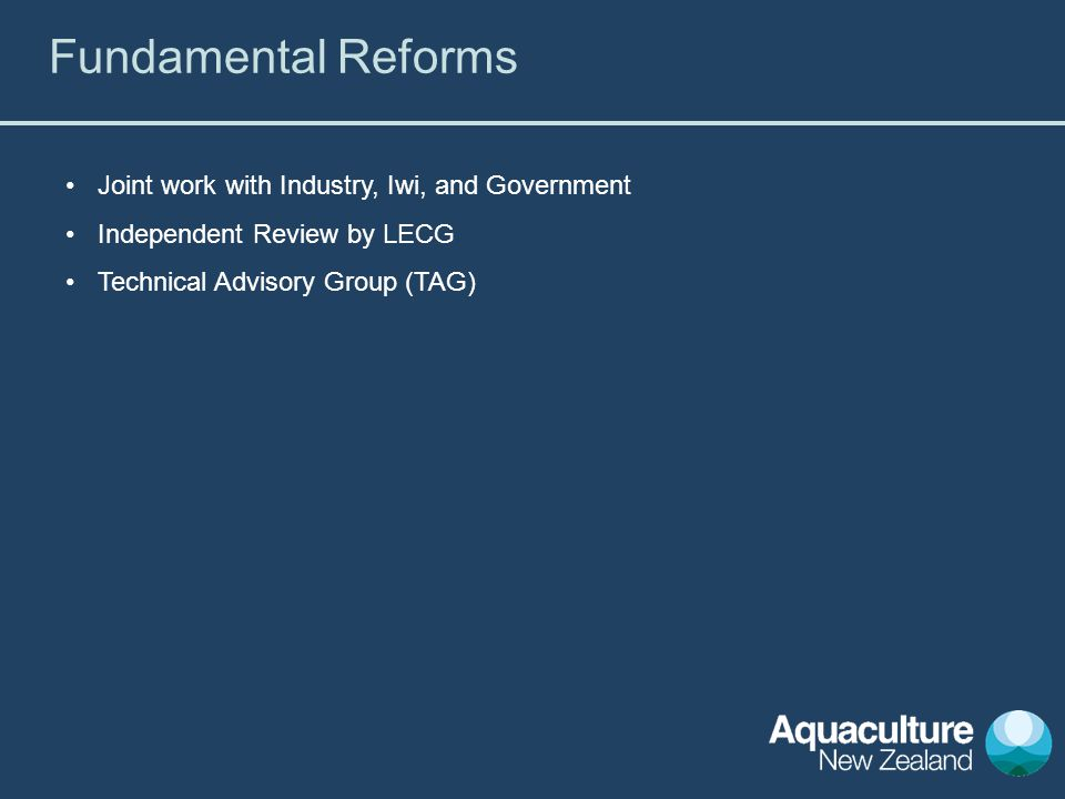 Joint work with Industry, Iwi, and Government Independent Review by LECG Technical Advisory Group (TAG) Fundamental Reforms