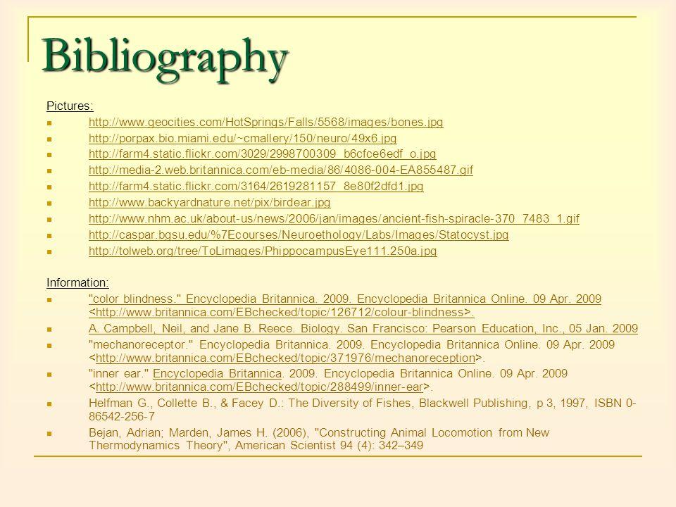 Bibliography Pictures: http://www.geocities.com/HotSprings/Falls/5568/images/bones.jpg http://porpax.bio.miami.edu/~cmallery/150/neuro/49x6.jpg http:/