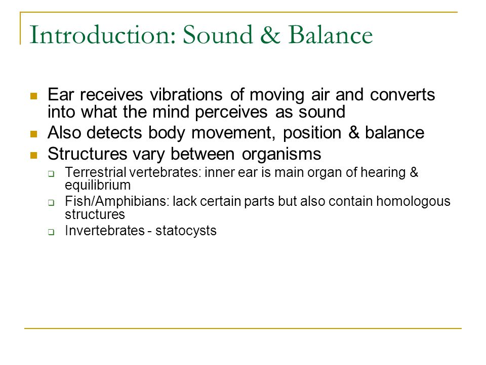 Introduction: Sound & Balance Ear receives vibrations of moving air and converts into what the mind perceives as sound Also detects body movement, pos