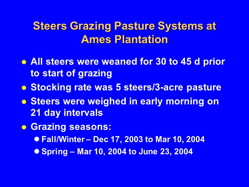 Steers Grazing Pasture Systems at Ames Plantation All steers were weaned for 30 to 45 d prior to start of grazing Stocking rate was 5 steers/3-acre pasture Steers were weighed in early morning on 21 day intervals Grazing seasons: Fall/Winter – Dec 17, 2003 to Mar 10, 2004 Spring – Mar 10, 2004 to June 23, 2004