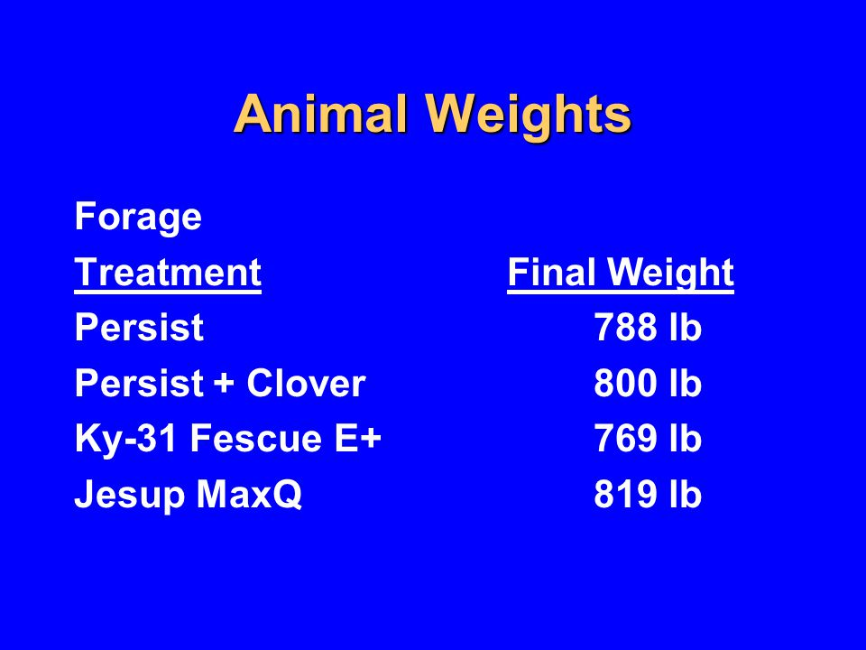Weight Gain/Animal Forage Treatment Total Weight Gain Persist197 lb Persist + Clover204 lb Ky-31 FescueE+179 lb Jesup MaxQ219 lb