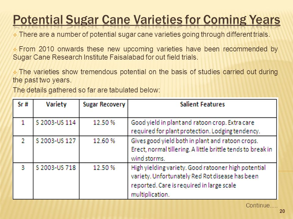  There are a number of potential sugar cane varieties going through different trials.