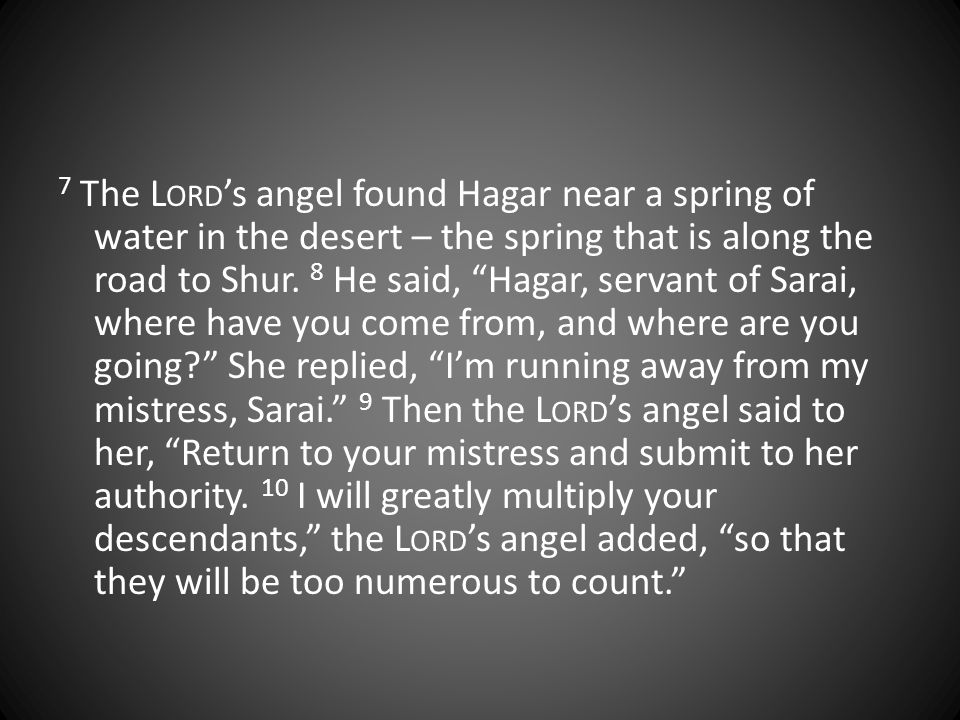7 The L ORD 's angel found Hagar near a spring of water in the desert – the spring that is along the road to Shur.