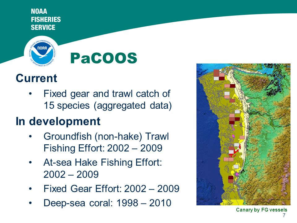 7 PaCOOS Current Fixed gear and trawl catch of 15 species (aggregated data) In development Groundfish (non-hake) Trawl Fishing Effort: 2002 – 2009 At-sea Hake Fishing Effort: 2002 – 2009 Fixed Gear Effort: 2002 – 2009 Deep-sea coral: 1998 – 2010 Canary by FG vessels
