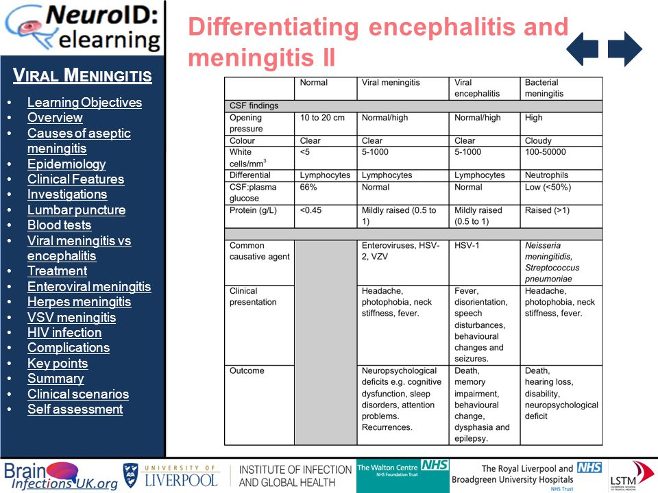 V IRAL M ENINGITIS Learning Objectives Overview Causes of aseptic meningitisCauses of aseptic meningitis Epidemiology Clinical Features Investigations
