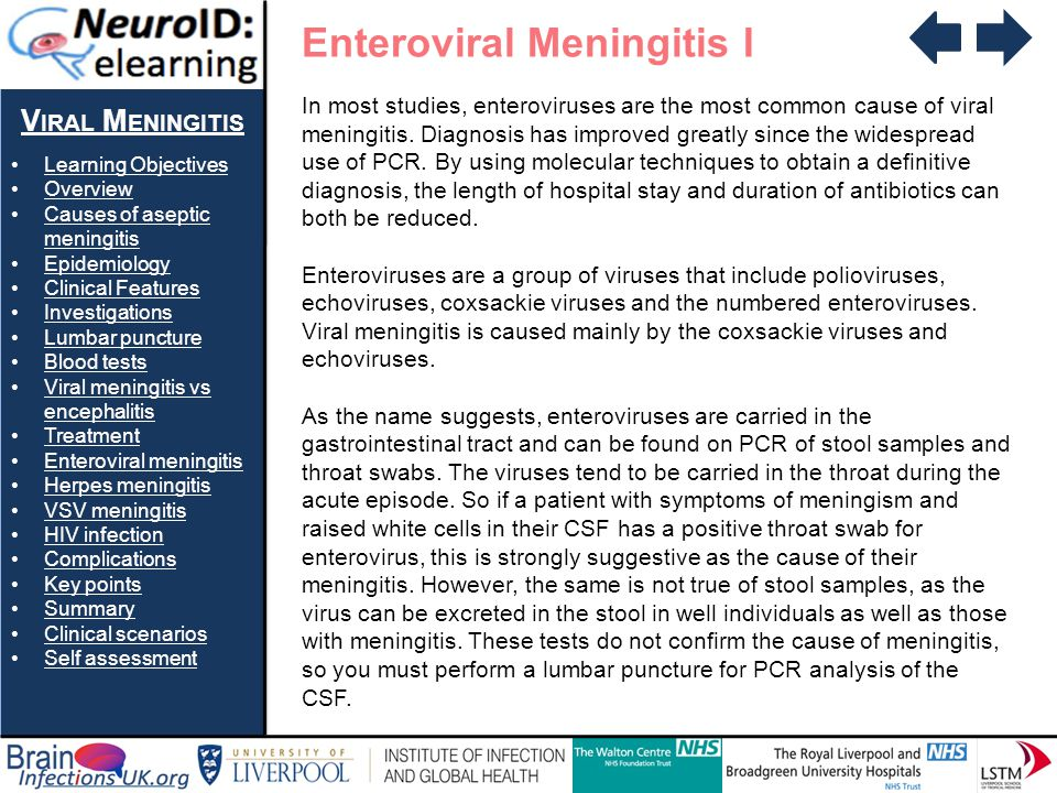 V IRAL M ENINGITIS Learning Objectives Overview Causes of aseptic meningitisCauses of aseptic meningitis Epidemiology Clinical Features Investigations Lumbar puncture Blood tests Viral meningitis vs encephalitisViral meningitis vs encephalitis Treatment Enteroviral meningitis Herpes meningitis VSV meningitis HIV infection Complications Key points Summary Clinical scenarios Self assessment Enteroviral Meningitis I In most studies, enteroviruses are the most common cause of viral meningitis.