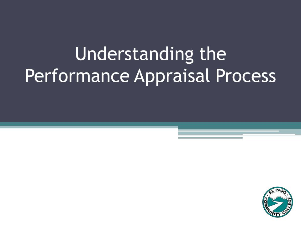 Supervisors click Add New Entry to add Performance Improvement entries, if applicable.