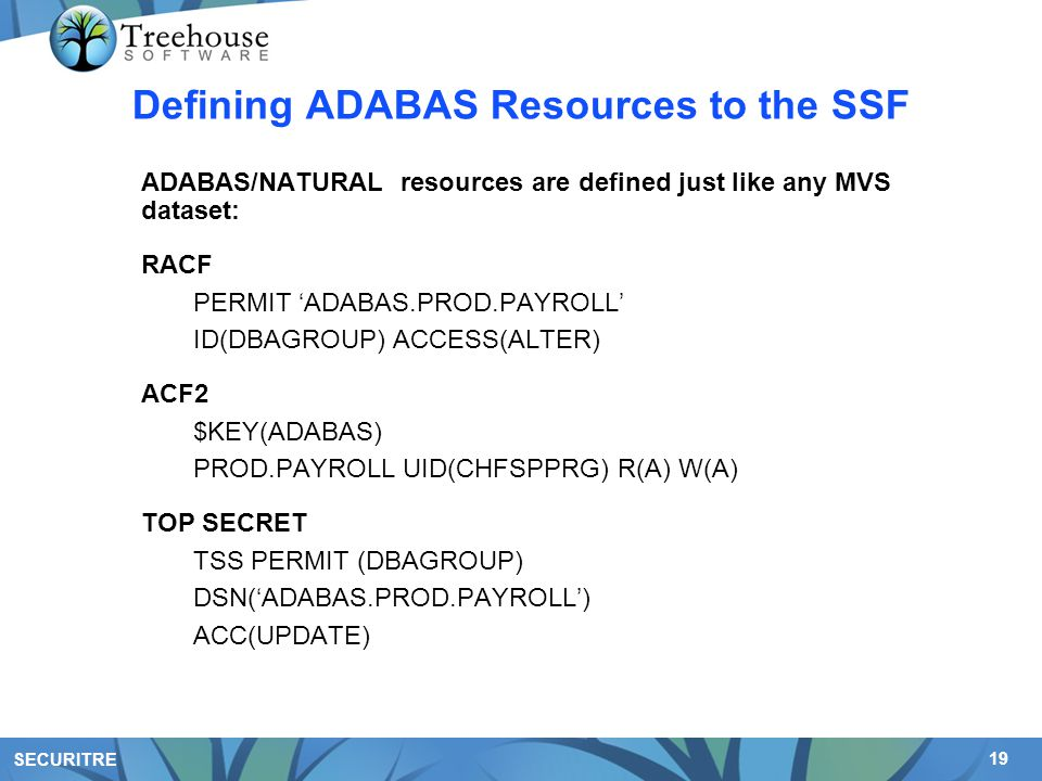 19 SECURITRE Defining ADABAS Resources to the SSF ADABAS/NATURAL resources are defined just like any MVS dataset: RACF PERMIT 'ADABAS.PROD.PAYROLL' ID(DBAGROUP) ACCESS(ALTER) ACF2 $KEY(ADABAS) PROD.PAYROLL UID(CHFSPPRG) R(A) W(A) TOP SECRET TSS PERMIT (DBAGROUP) DSN('ADABAS.PROD.PAYROLL') ACC(UPDATE)