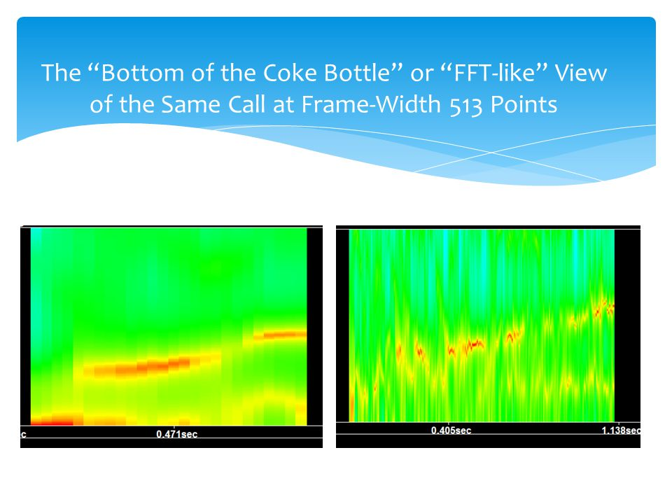 The Bottom of the Coke Bottle or FFT-like View of the Same Call at Frame-Width 513 Points