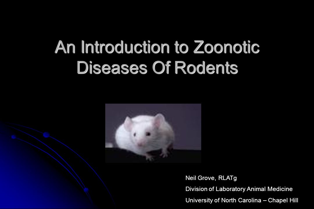 An Introduction to Zoonotic Diseases Of Rodents Neil Grove, RLATg Division of Laboratory Animal Medicine University of North Carolina – Chapel Hill