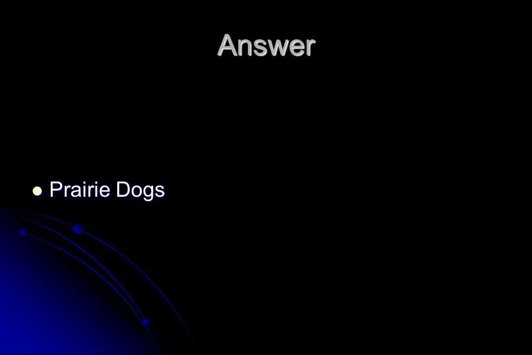Answer Prairie Dogs Prairie Dogs