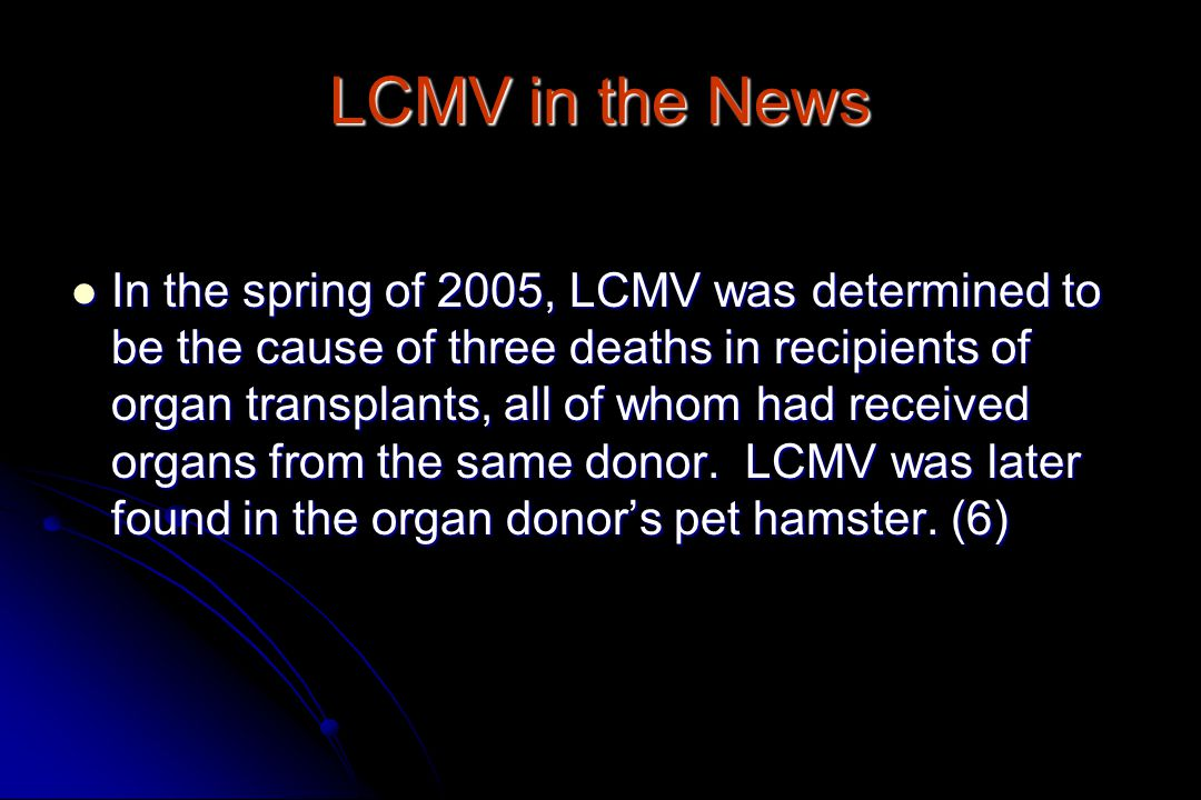 LCMV in the News In the spring of 2005, LCMV was determined to be the cause of three deaths in recipients of organ transplants, all of whom had received organs from the same donor.