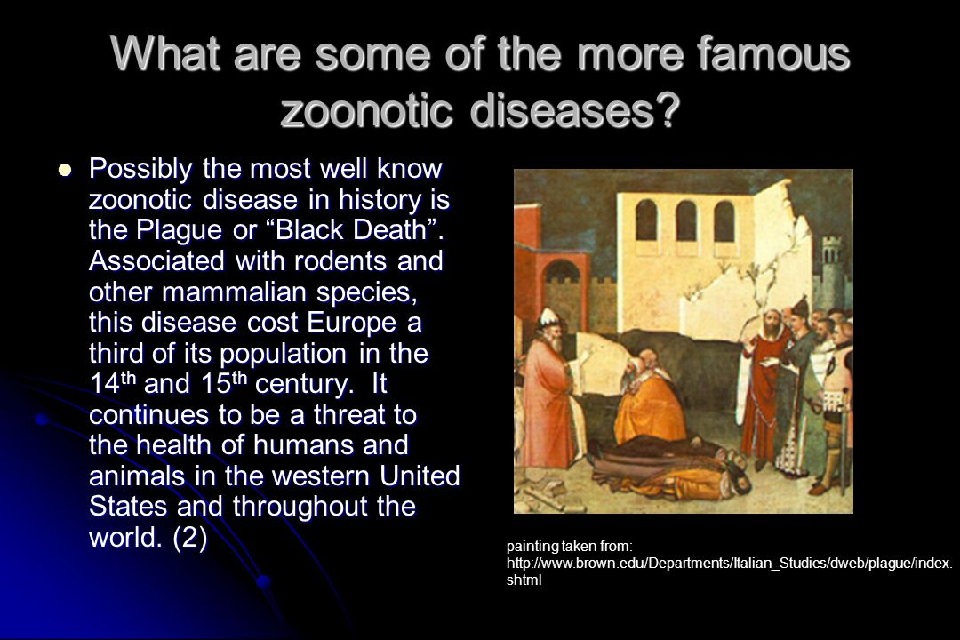 What are some of the more famous zoonotic diseases.