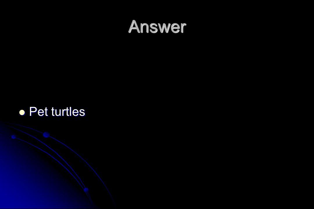 Answer Pet turtles Pet turtles
