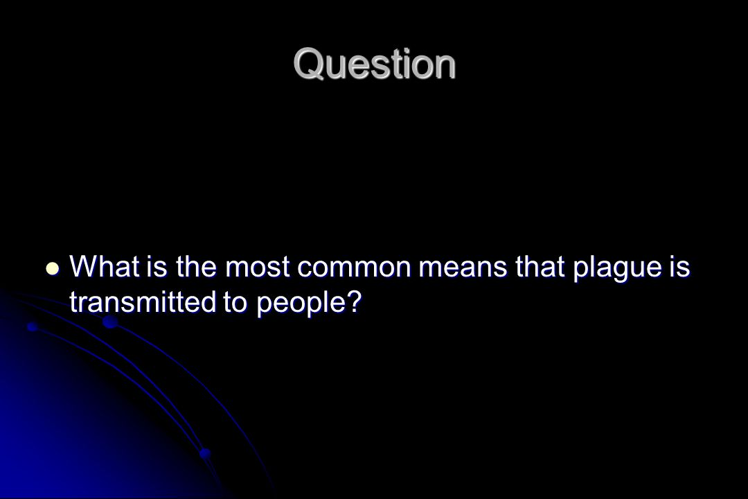 Question What is the most common means that plague is transmitted to people.