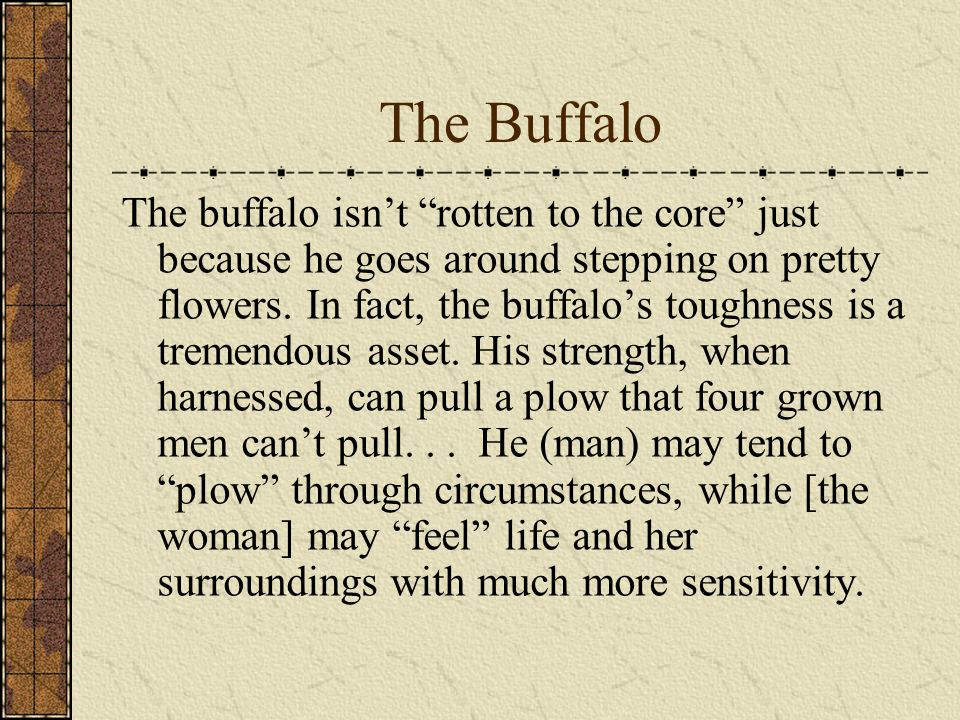 The Buffalo The buffalo isn't rotten to the core just because he goes around stepping on pretty flowers.