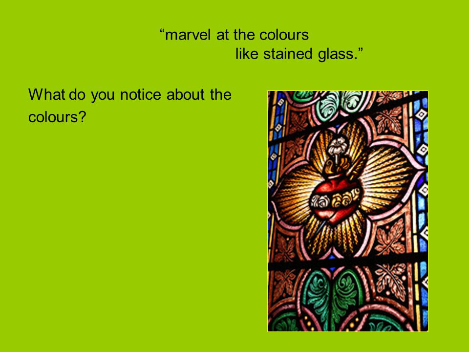 """marvel at the colours like stained glass."" What do you notice about the colours?"