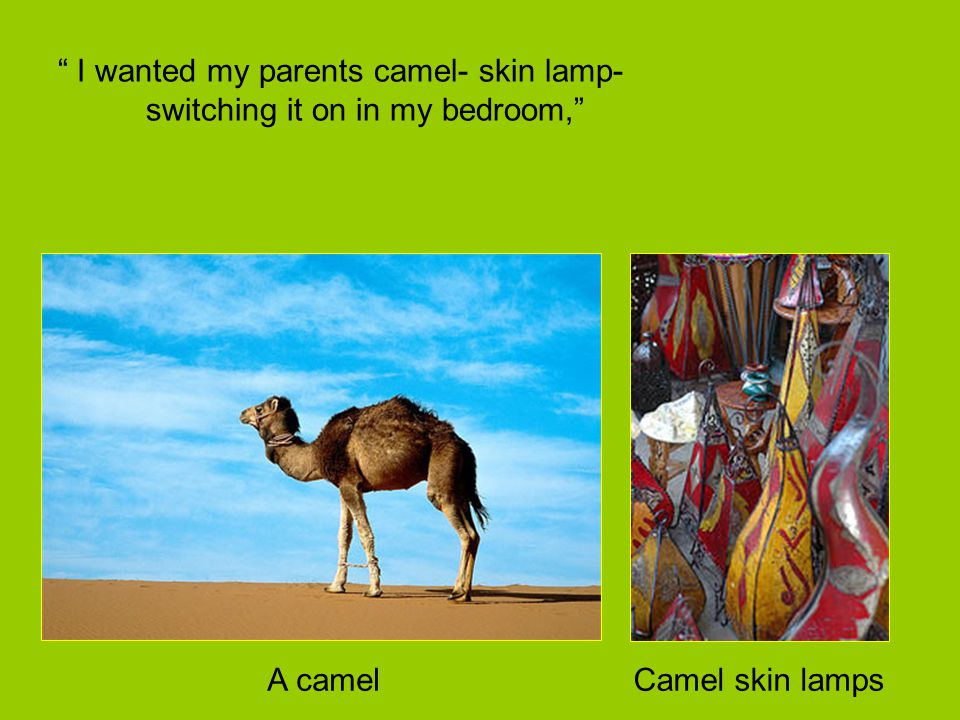 """ I wanted my parents camel- skin lamp- switching it on in my bedroom,"" A camelCamel skin lamps"