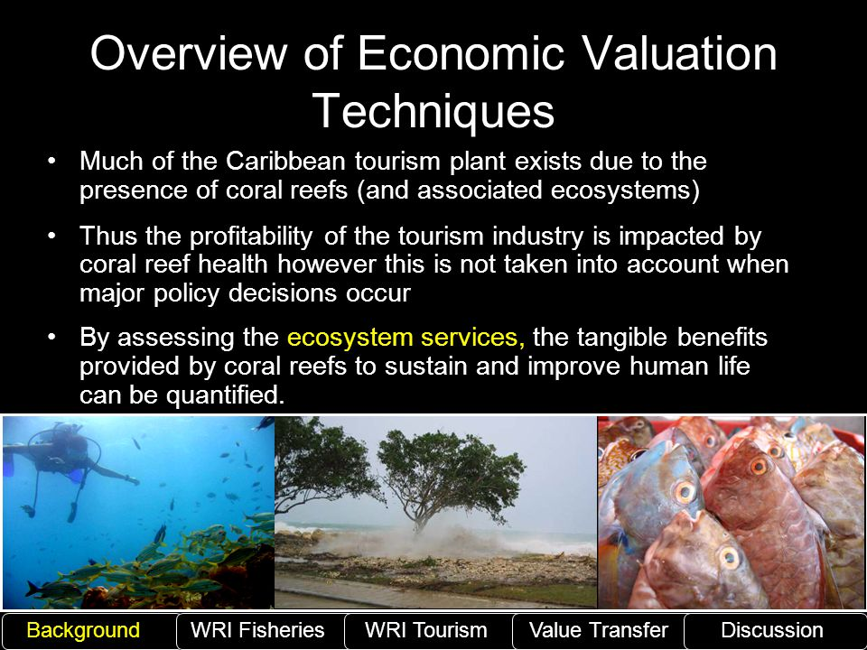 Overview of Economic Valuation Techniques Much of the Caribbean tourism plant exists due to the presence of coral reefs (and associated ecosystems) Th