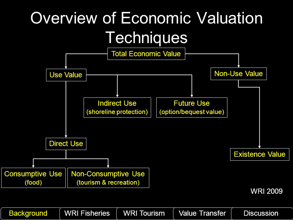 Overview of Economic Valuation Techniques Total Economic Value Non-Use Value Existence Value Future Use (option/bequest value) Indirect Use (shoreline