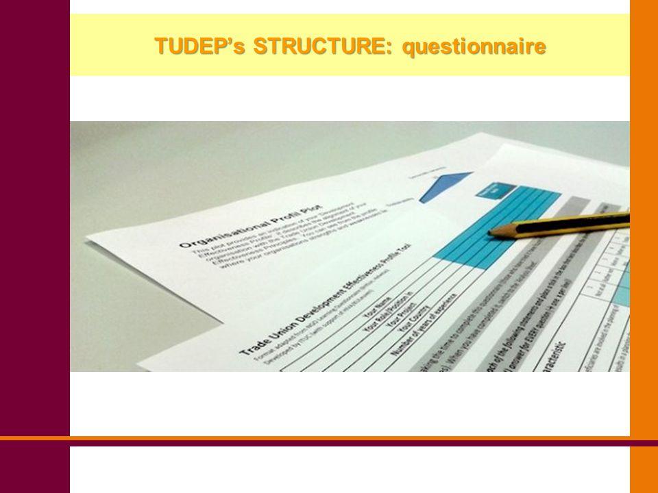 TUDEP's STRUCTURE: questionnaire