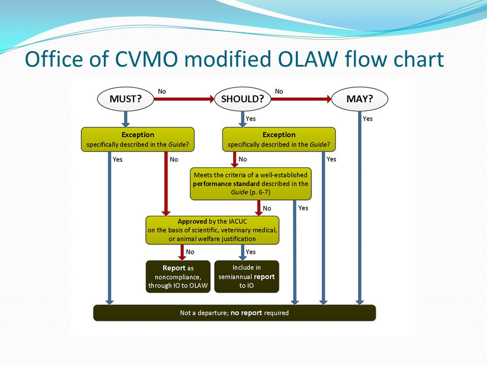 Office of CVMO modified OLAW flow chart