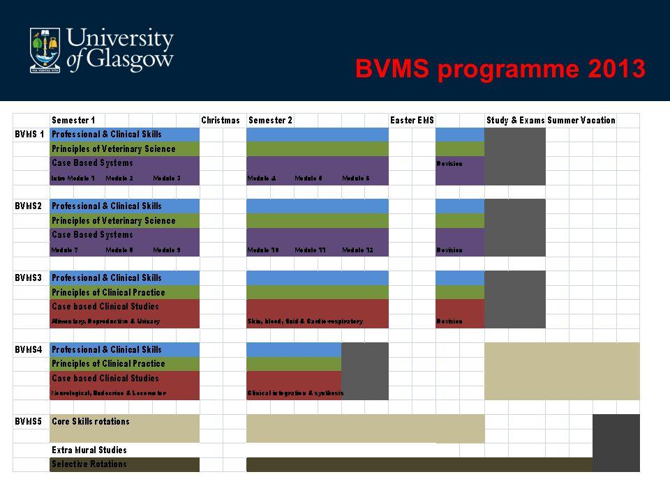 BVMS programme 2013