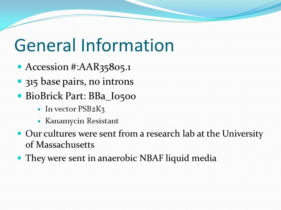 General Information Accession #:AAR35805.1 315 base pairs, no introns BioBrick Part: BBa_I0500 In vector PSB2K3 Kanamycin Resistant Our cultures were sent from a research lab at the University of Massachusetts They were sent in anaerobic NBAF liquid media